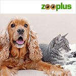 Zooplus sponsor